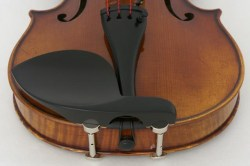 Guarneri_mit_Hil_4ee71f0ccfa53