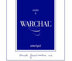 WARCHAL_Ametyst__500685074e365.png